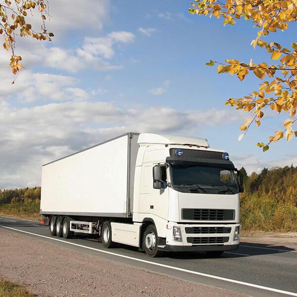 Trucks 3 (1)